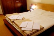hotel-mlynky-1